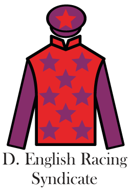 Affordable-irish-racehorse-syndicate-shares---Damian-English