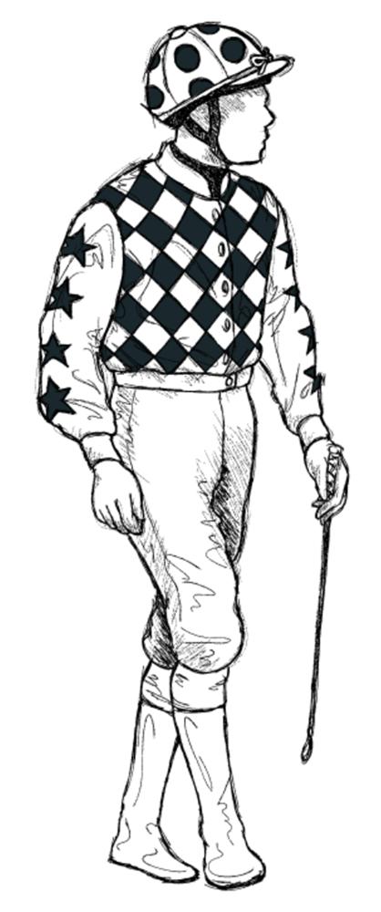 Cathal-McGuckin horse racing silks