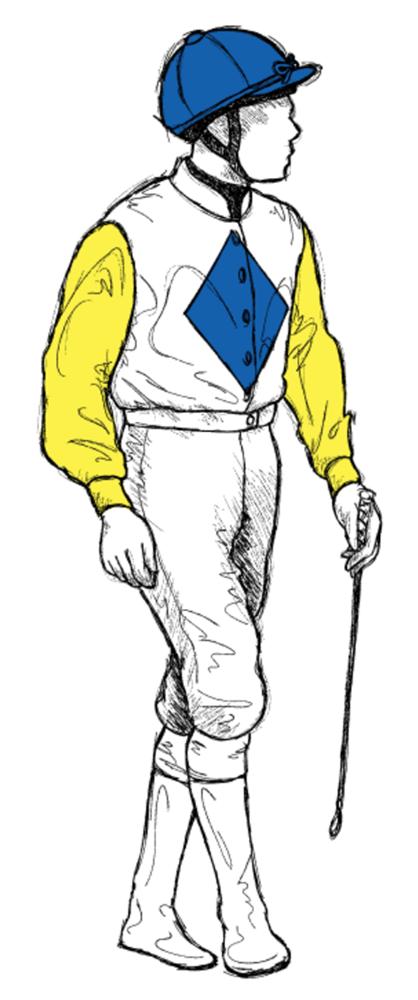 Charles E Fipke Horse Racing Colours