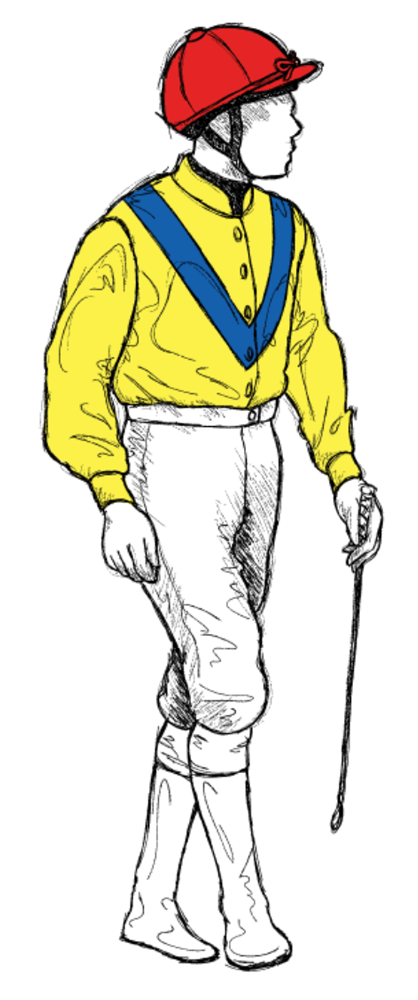 Grougha-Stables-LTD horse racing silks