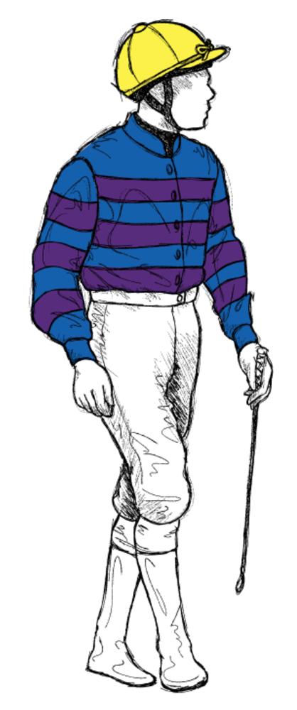 Noel-Hayes Horse Racing Silks